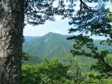 Гора Трезубец, вид на г. Сибирь