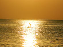 Закат у Черного моря, фото 2019 г.
