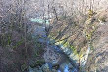 Устье реки Мишоко