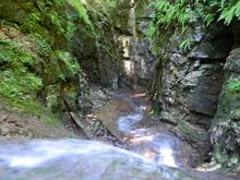 Каньон реки Мезмай в Пихтовом бору, хребет Азиш-Тау