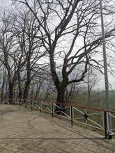 Площадка на вершине г. Физиабго, фото май 2019 г.