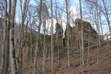 Скрытые лесом зубья горы Трезубец