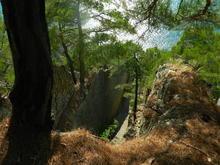 """В пути к скале """"Парус"""" через сосновый хребет"""